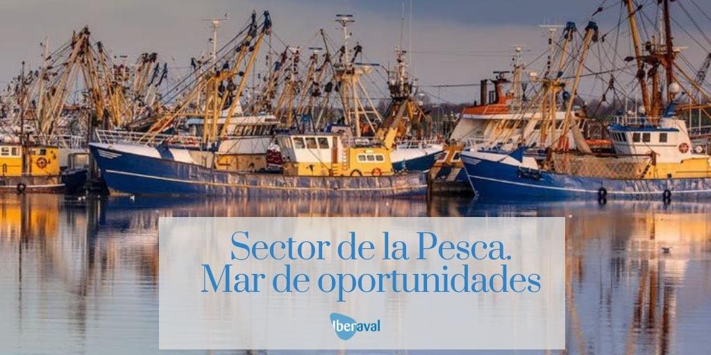 Financiación para la Pesca en España. Un mar de posibilidades