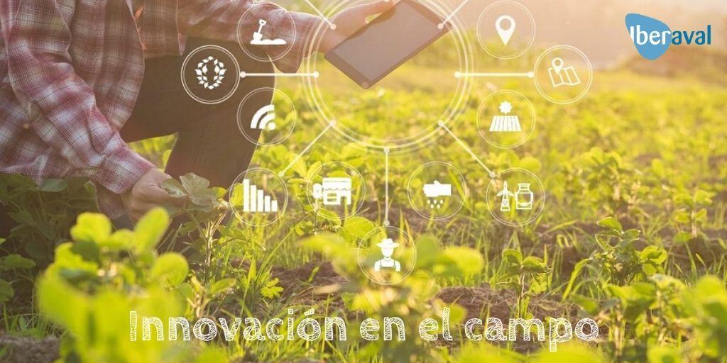 Innovación en el campo